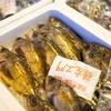 2017年1月28日 小浜漁港 お魚情報