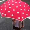 雨の日でもモーニング