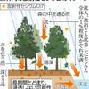 放射性セシウム長く地表に 森林内に深く浸透せず - 東京新聞(2019年6月21日)