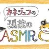 カネジュンの孤独のASMR ~第1回 耳かき音(ボイスなし)