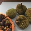 シンガポールからジョホールへ(2.食べ物編)