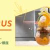 ビューティーコネクション 銀座のフルーツサロンで柑橘フルコース三昧