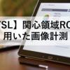 【FSL】ROI(VOI)を用いた画像計測