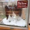 福山駅のサイコキラーおにぎりは絶対に食べて欲しい隠れた福山名物。