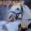【阪神競馬結果回顧 12月4週】独自のレースレベル査定