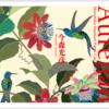 「自然と暮らす切り紙の世界」今森光彦