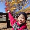 秋の森!乗鞍高原をYouTubeで紹介しました