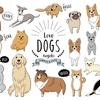 各都道府県の犬の登録頭数と人口比率を調べてみました