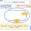 2020/04/12(日) 桜花賞(G1) 有力馬紹介 マルターズディオサ