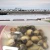 三重県の松名瀬海岸へ潮干狩りに行ってきました。