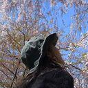 桜木星子の…タワゴト