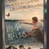 映画「海を駆ける」