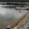 ちょっと道草 210213  写真で Go to西表島(2  白浜のトビハゼ