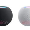 これが「HomePod mini」!??公式画像がリークされた模様!ホワイトとスペースグレイの2色