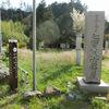 七面大天女岩屋(新潟市西蒲区角田)と龍の木