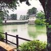 雨の小田原城に紫陽花を見に行く。