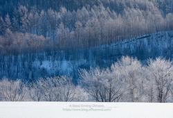 ひがしもこと(東藻琴)の冬景色