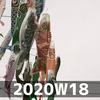 週報 2020W18