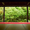 【必見】紅葉が美しい京都 一乗寺にある圓光寺は新緑の時期もお薦めです。(Kyoto, zuiganzan enkouji temple)