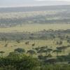 地球絶景紀行 ― セレンゲティ国立公園 ―