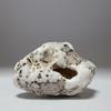 糸魚川紋様石vol.16「ジャミラを想って 泣ける石」奇石という奇跡