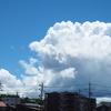夏の雲って感じ