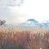秋の山歩き、山梨県の三方分山と不完全な味噌ラーメン