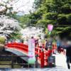 小田原城へ行く!〜お花見昼編〜