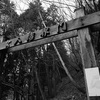 修行の道『大峯奥駈道』5泊6日テント泊縦走(1日目)