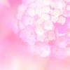 6月の星からのMessage牡羊座~乙女座
