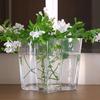 ホワイトのルリマツリをIKEAのガラス花瓶にざっくりと♪ グリーンとホワイトが残暑に涼しげ♪