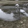 Blender 水面の波紋の作り方【雨天時】