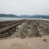 旅の記憶@宮崎 ~鬼の洗濯板、地頭鶏、うなぎまで観光資源からグルメまで盛りだくさん!!~