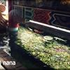 長崎中華街『江山楼 中華街本店』 ちゃんぽんと皿うどんはベタにこちらで。