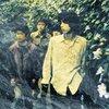 文学的な歌詞と骨太ビートの集大成Grapevineの全17アルバムについて語る