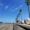 宮崎旅行3日目〜青島ビーチで一日中だらだらしてたよ。〜