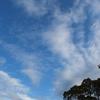 風速く 流れる雲 空の呼吸が凄い彡 彡 彡