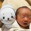 2015年10月に娘が生まれた話 その2「無痛分娩する?しない?」