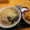 新橋【かのや 新橋駅構内店】かき揚丼セット ¥600