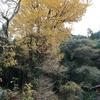 中岡慎太郎記念公園周辺の清掃日。