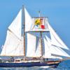 初めて沼津の帆船Amiで半日航海を始めます!
