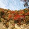 養老渓谷紅葉の旅2010(まとめ)