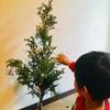クリスマスツリーツリー作成中です♩