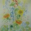 2021年:『春を描く(1) ー ダリア・ヒマワリ・アルストロメリア他色々』