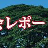 第3回アコパラ東京地区大会レポート!