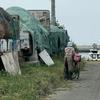 北海道渡島地方、ネコ歩き