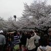 上野公園を愛す。桜が咲いても、終わっても。〜そして「旅マン」(ほりのぶゆき)