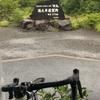沖縄中止になったので