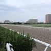 【レパードステークス 2019 予想】過去のレース傾向分析&各馬評価まとめ / ポイントは~~~と1800mダート実績と暑さ耐性