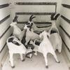 山羊鉢、羊鉢の酸化焼成窯出し